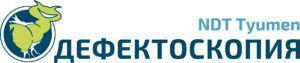 Defectoskopy_NDT Tyumen_logo